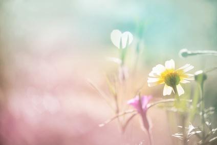 Mantra, Mantras, Engel Foto: ©  Floydine @ Fotolia