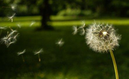 Wünsche,Wunsch,Bestellung,Universum Foto: ©  photojustus @ Fotolia