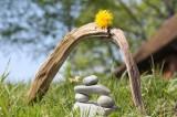 Heilerin Foto: ©  Abe Mossop @ Fotolia