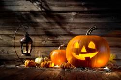 Halloween  Foto: ©  Alexander Raths @ shutterstock
