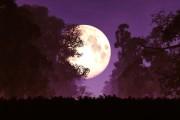 Vollmond und abnehmender Mond - ungeahnte Kräfte  Foto: ©  boscorelli @ Fotolia