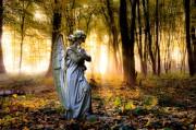 Engelkarten - Unterstützung durch unsere himmlischen Helfer nutzen  Foto: ©  Stefan Körber @ Fotolia
