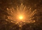 Meditation - Der Weg zu einem besseren Körpergefühl  Foto: ©  artida @ shutterstock