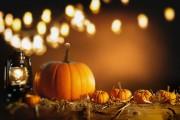 Halloween - Ein mystisches Fest mit einer langen Tradition  Foto: ©  stockcreations @ shutterstock