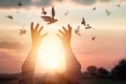 Die Kraft des Gebetes  Foto: ©  PopTika @ shutterstock