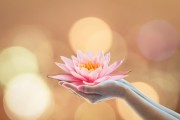 Die Energie der neuen Zeit integrieren  Foto: ©  Chinnapong @ shutterstock