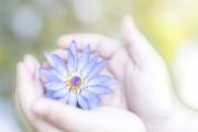Die grosse Falle - Spirituelle Arroganz  Foto: ©  BlurryMe @ shutterstock