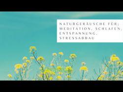 Meditation am Bach Foto: © thapter18 @ Shutterstock